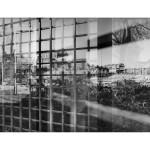 #P46 urban landscape#4
