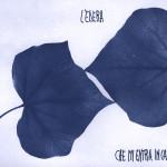 erbariocyano10